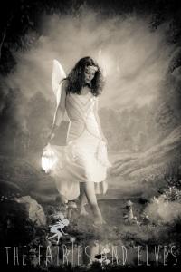 fairies adventures