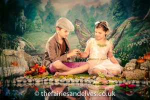 Norwich Fairies