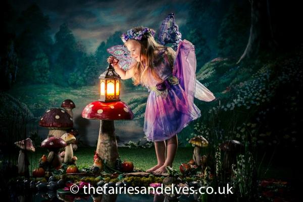 Harlow Fairies