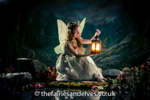 Harlow Fairies